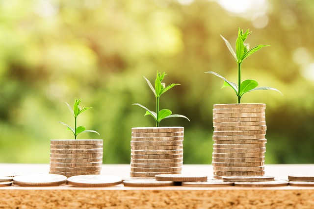 Consider alternative investments for retirement funds
