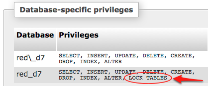Watch out for the underscore! Setting privileges using